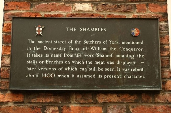 the-shambles-7[2]
