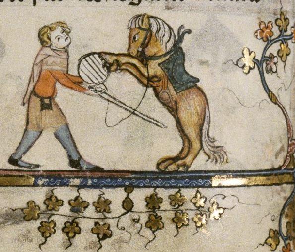 combative horse