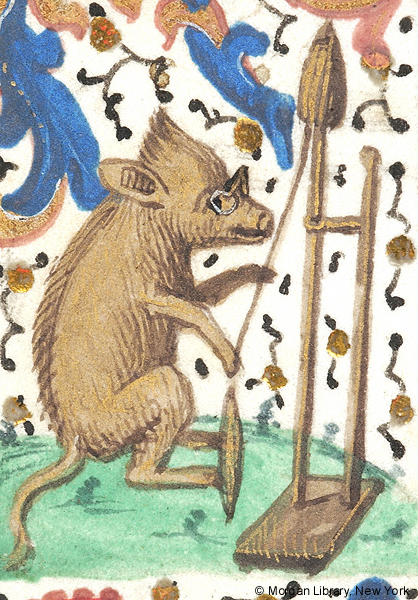 Medieval manuscript image of a boar wearing spectacles, seated before a distaff on a stand, holding the cord to a spindle with its foot.