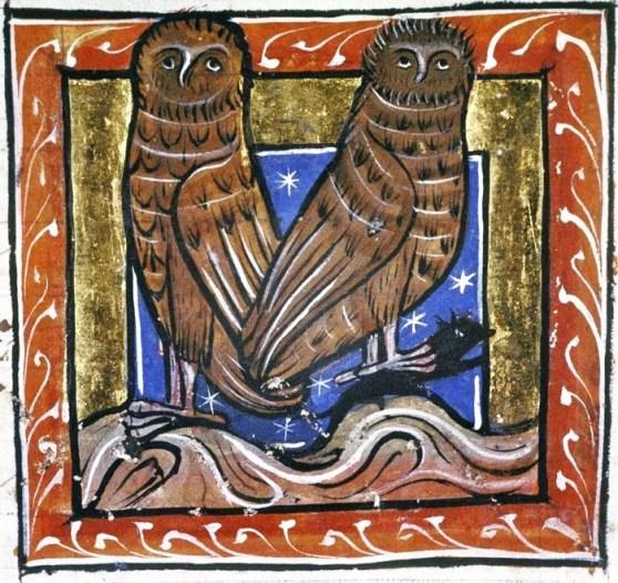 1-medieval-bestiary