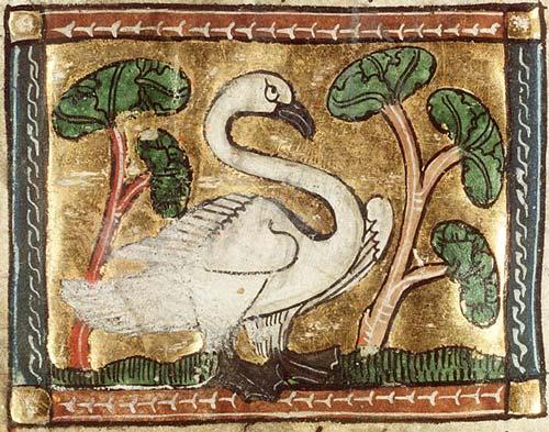 medieval_swan_1