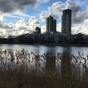 2017-03-22 Woodberry Wetlands