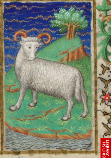 bedford hours 3r