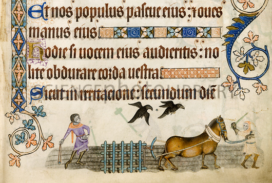 Medieval agriculture, Luttrell Psalter