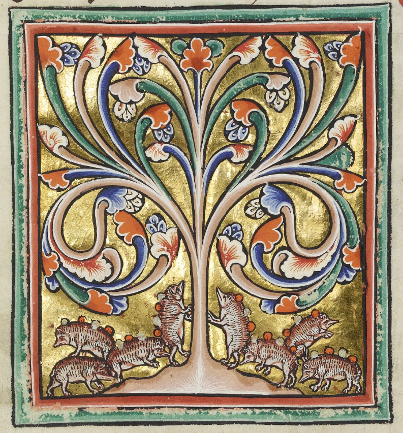 Medieval manuscript image of eight hedgehogs collecting round, red-and-white fruits on their backs underneath a colourful tree.