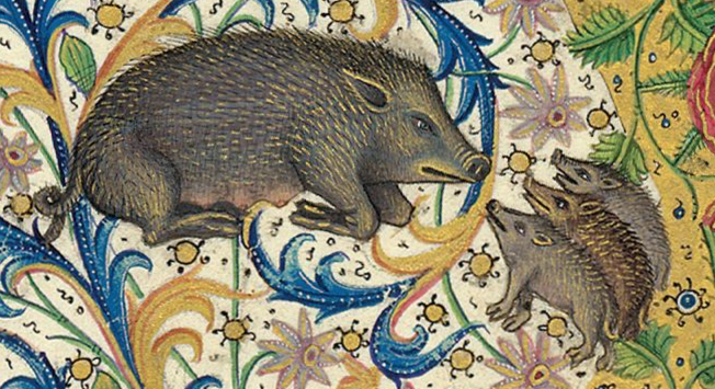 Medieval manuscript image of a sow looking at her three piglets who gaze back lovingly, against a background of floral motifs.