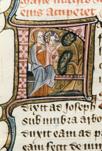 Medieval manuscript letter F, in which sit the Virgin Mary and the Christ Child; the child gestures to a tree, which bows towards him, while his mother affectionately rests a hand on his shoulder.
